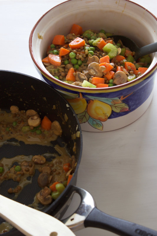 Mushroom and lentil shepherd's pie is rich in flavour and creamy and cheesy. Full of veggies its the perfect cold, winter's night meal.